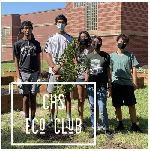 CHS students work to cultivate the garden at the school.
