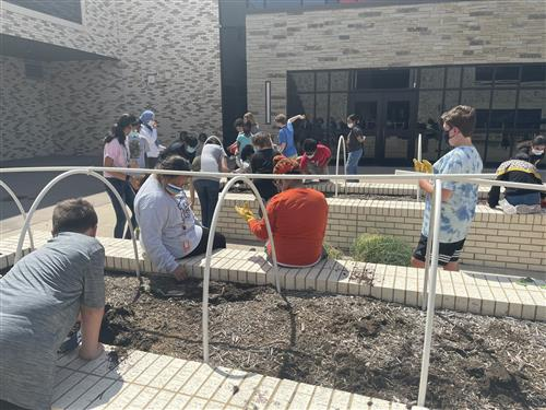 Students at CMS West work in the school's gardens.